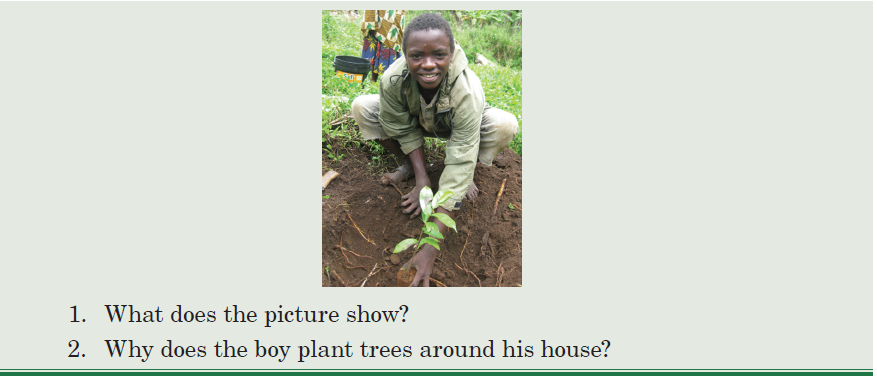 The boy plants trees around his house