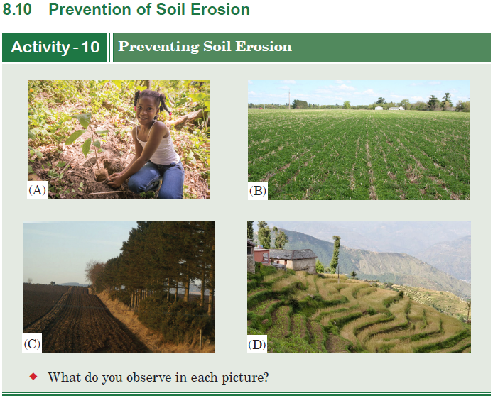 prevention of soil erosion